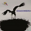 Shadowbird CD
